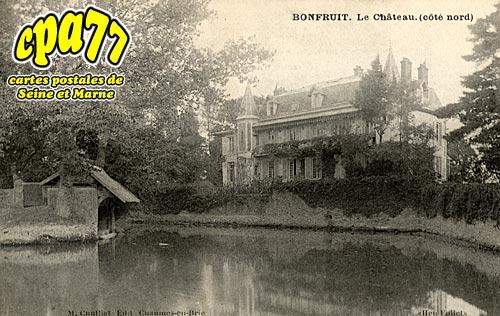 Aubepierre Ozouer Le Repos - Bonfruit - Le Château (côté nord)
