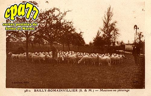 Bailly Romainvilliers - Moutons au pâturage