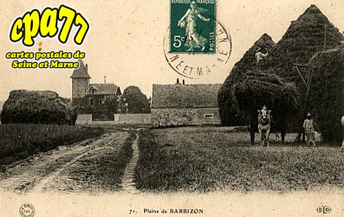 Barbizon - Plaine de barbizon