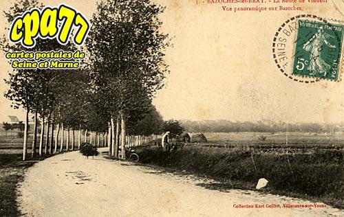 Bazoches Lès Bray - La Route de Vinneuf - Vue panoramique sur Bazoches