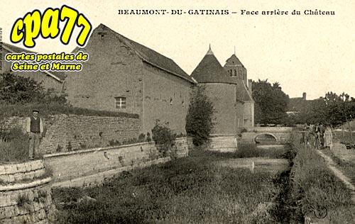 Beaumont Du Gâtinais - Face arrière du Château
