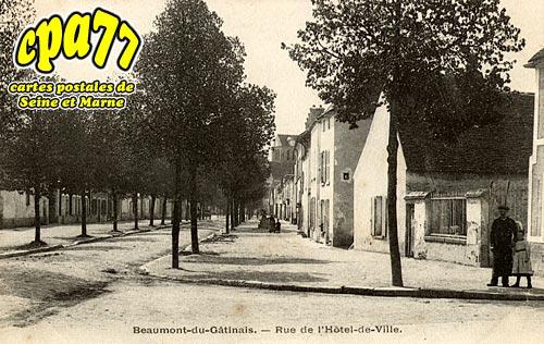 Beaumont Du Gâtinais - Rue de l'Hôtel-de-Ville