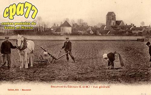 Beaumont Du Gâtinais - Vue générale