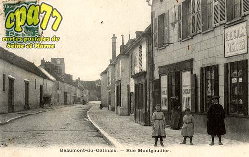 Beaumont Du Gâtinais - Rue Montgaudier