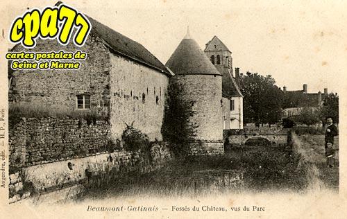 Beaumont Du Gâtinais - Fossés du Château, vus du Parc