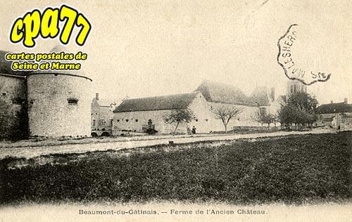 Beaumont Du Gâtinais - Ferme de l'Ancien Château
