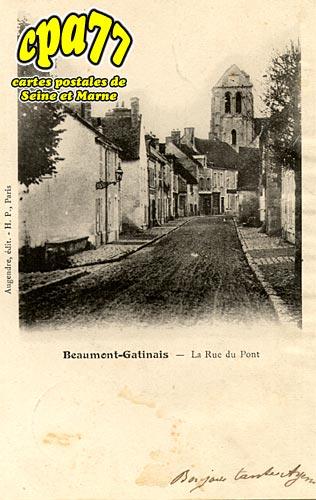 Beaumont Du Gâtinais - La Rue du Pont