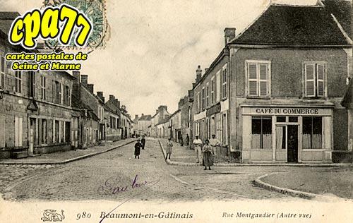 Beaumont Du Gâtinais - Rue Montgaudier (autre vue)