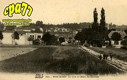 Bois Le Roi - La Cave et le Côteau de Chartrette