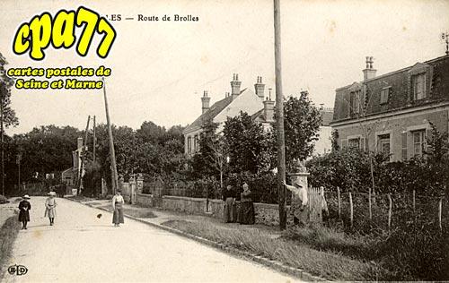 Bois Le Roi - Brolles - Route de Brolles