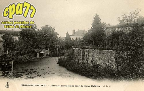 Brie Comte Robert - Fossés et restes d'une tour du vieux Château