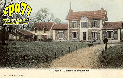 Cesson - Château de Breviandes