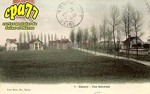 Cesson - Vue générale