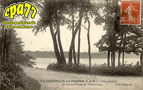 La Chapelle Gauthier - Vue générale du Grand-Etang de Villefermoy