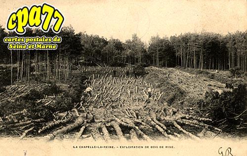 La Chapelle La Reine - Exploitation de bois de mine