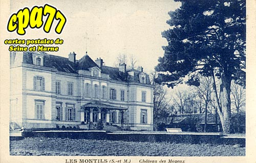 La Chapelle Rablais - Les Montils - Château des Moyeux