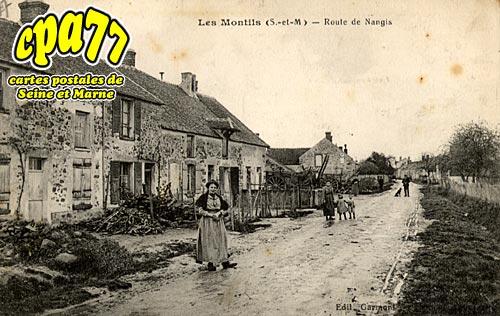 La Chapelle Rablais - Les Montils - Route de Nangis