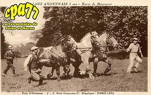 Chaumes En Brie - Etalons Ardennais - Haras de Maurevert