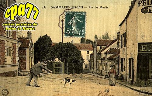 carte postale ancienne de dammarie les lys 77 rue du. Black Bedroom Furniture Sets. Home Design Ideas
