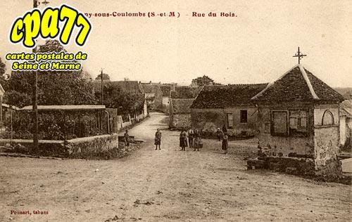 Germigny Sous Coulombs - Rue du Bois