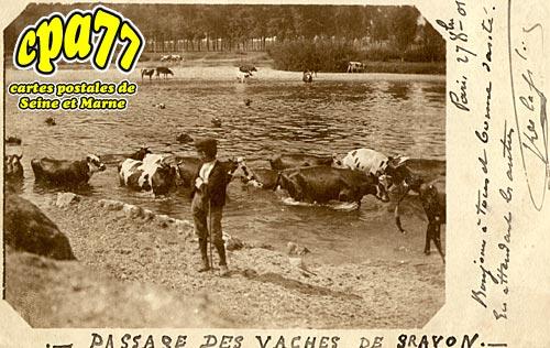 Gravon - Passage des vaches