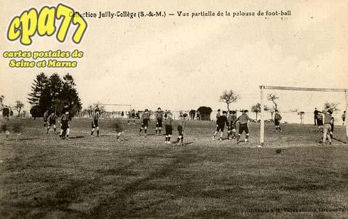 Juilly - Collection Juilly-Collège - Vue partielle de la pelouse de foot-ball