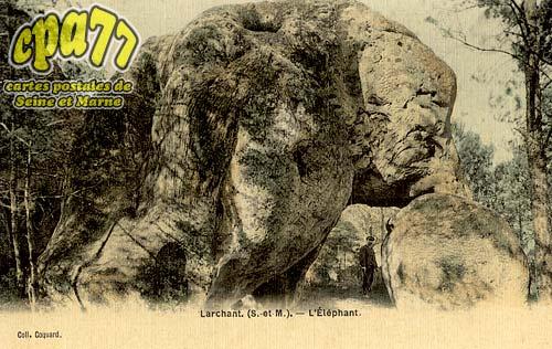 Larchant - L'Eléphant
