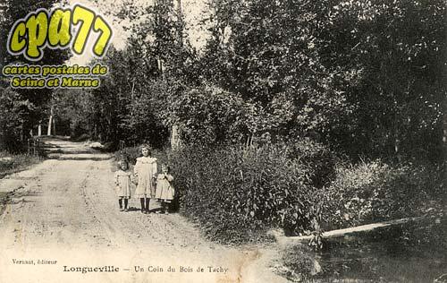 Longueville - Un Coin du Bois de Tachy