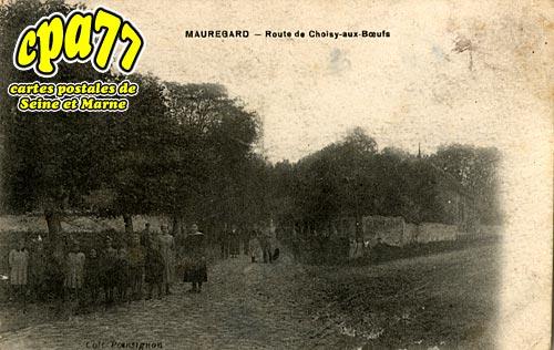 Mauregard - Route de Choisy-aux-Boeufs
