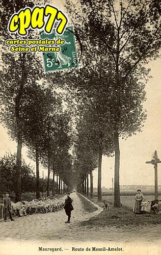 Mauregard - Route de Mesnil-Amelot