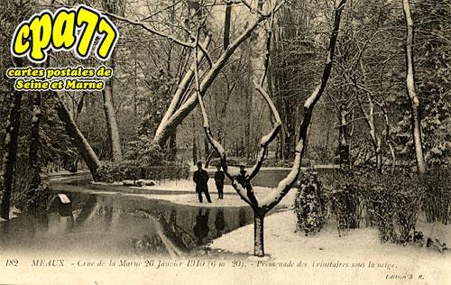 Meaux - Crue de la Marne 26 Janvier 1910 (6,20m) - Promenade des Trinitaires sous la neige
