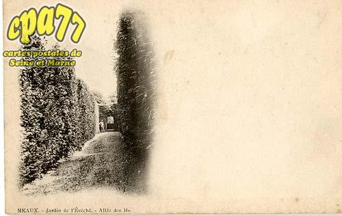 Meaux - Jardin de l'Evêché - Allée des Ifs