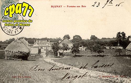 Melz Sur Seine - Blunay - Fontaine aux Bois