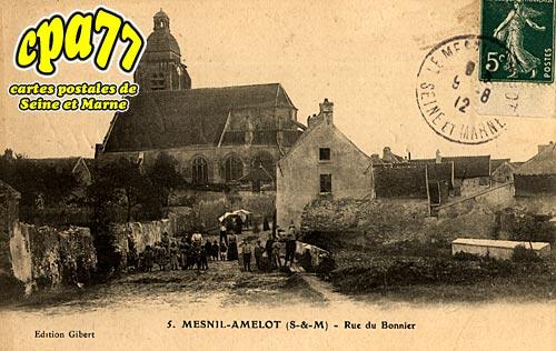 Le Mesnil Amelot - Rue du Bonnier