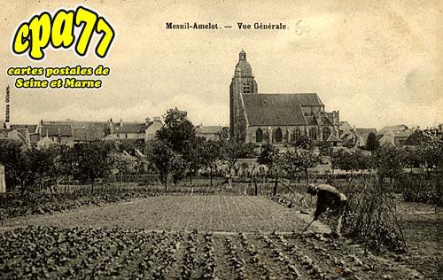 Le Mesnil Amelot - Vue Générale