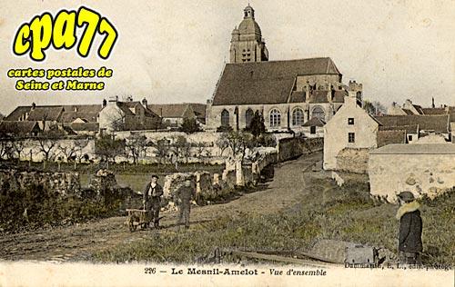 Le Mesnil Amelot - Vue d'Ensemble