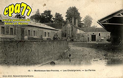 Montceaux Lès Provins - Les Chataigniers - La Ferme