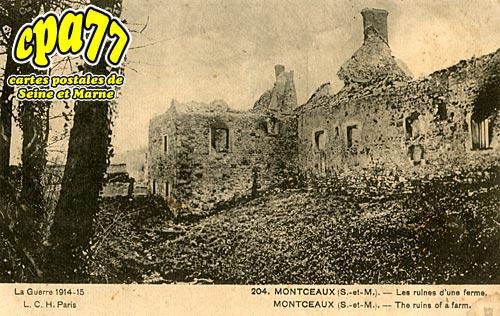 Montceaux Lès Provins - Les Ruines d'une Ferme