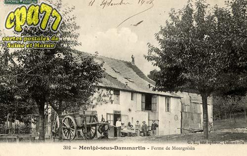 Montgé En Goële - Ferme de Montgrésin