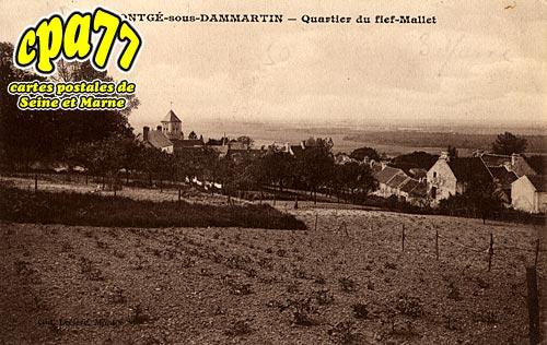 Montgé En Goële - Quartier du fief-Mallet