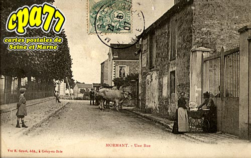 Mormant - Une Rue