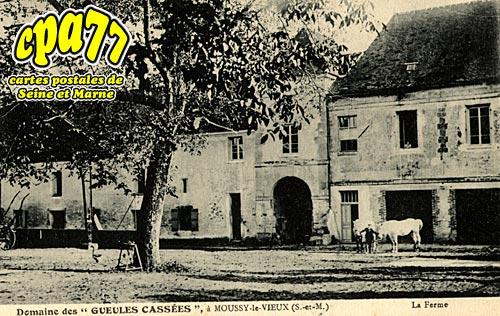 Moussy Le Vieux - Domaine des Gueules Cassées