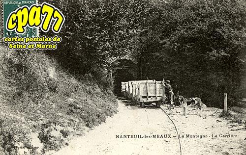Nanteuil Lès Meaux - La Montagne - La Carrière