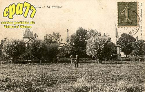 Nemours - La Prairie
