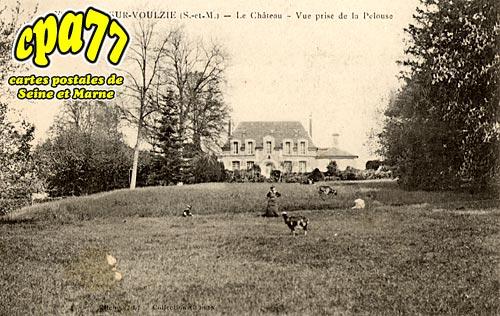 Les Ormes Sur Voulzie - Le Château - Vue prise de la Pelouse