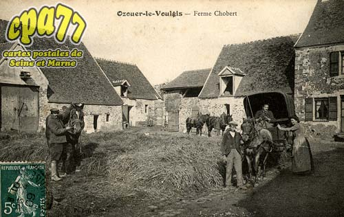 Ozouer Le Voulgis - Ferme Chobert