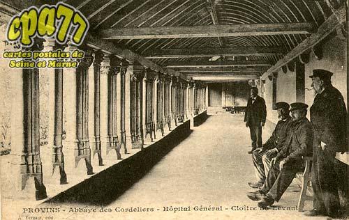 Provins - Abbaye des Cordeliers - Hôpital Général - Cloître du Levant