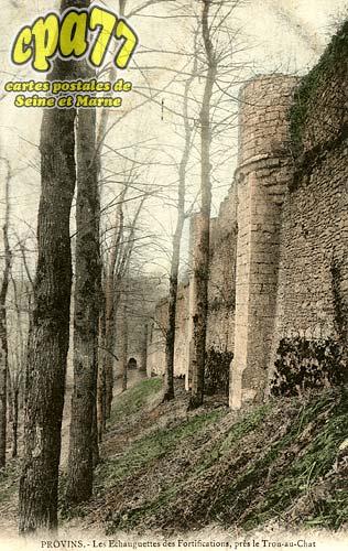 Provins - Les Echauguettes des Fortifications, près le Trou-au-Chat