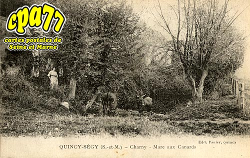 Quincy Voisins - Charny - Mare aux Canards