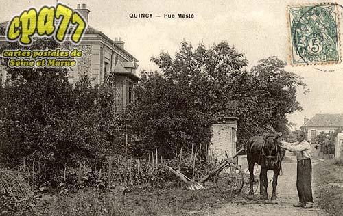 Quincy Voisins - Rue Maslé